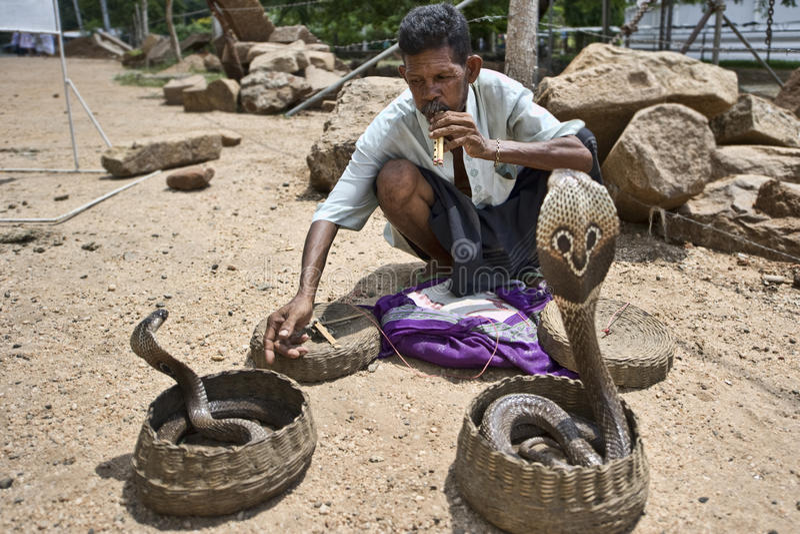 Charmeur de cobra photos libres de droits