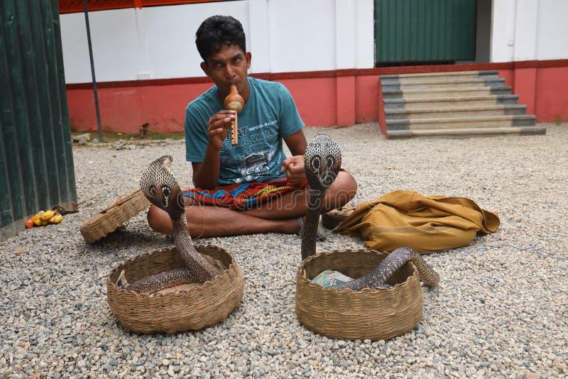 Charmeur de serpent dans Sri Lanka images libres de droits