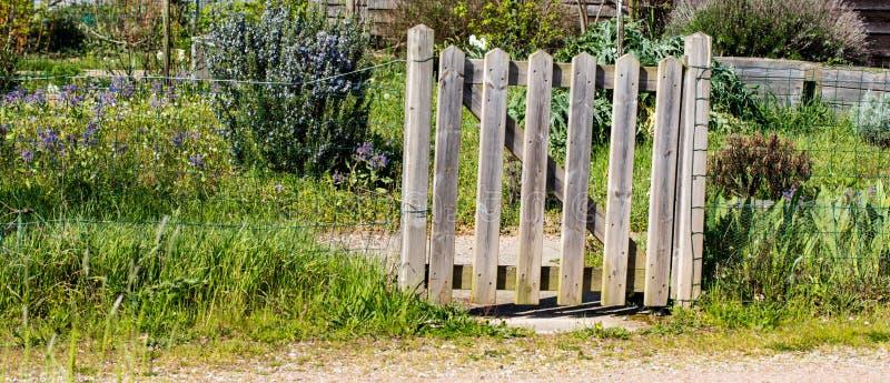 Charmigt lantligt trästaket av en liten organisk byträdgård arkivbilder