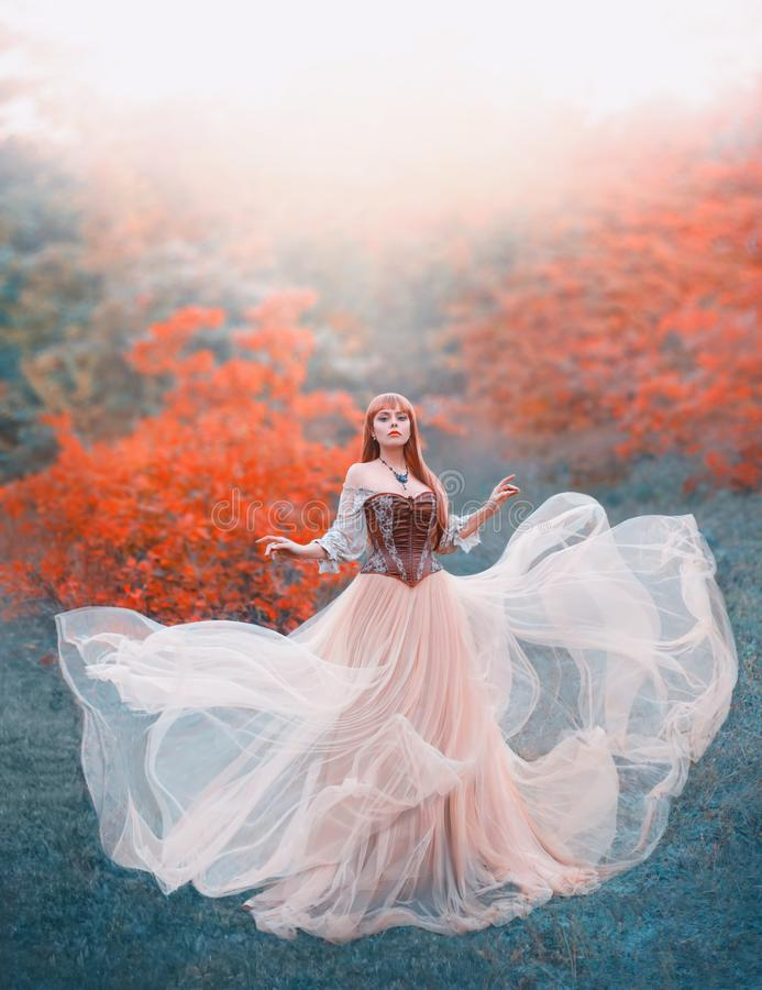 Free Charming Attractive Girl With Long Flying Waving Peach Light Vintage Dress Stands Alone In Forest, Innocent Lady Looks Stock Photo - 140306860