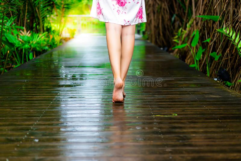 Charming beautiful woman is walking at wooden walkway at beautiful park after finished raining. Gorgeous girl has beautiful legs. royalty free stock photography