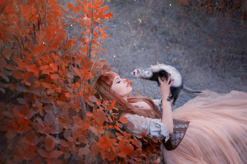 Charming beauty lies on green grass in forest, princess in long, gorgeous light dress plays with a ferret as if she is a. Fairy-tale animal red-haired girl with stock image