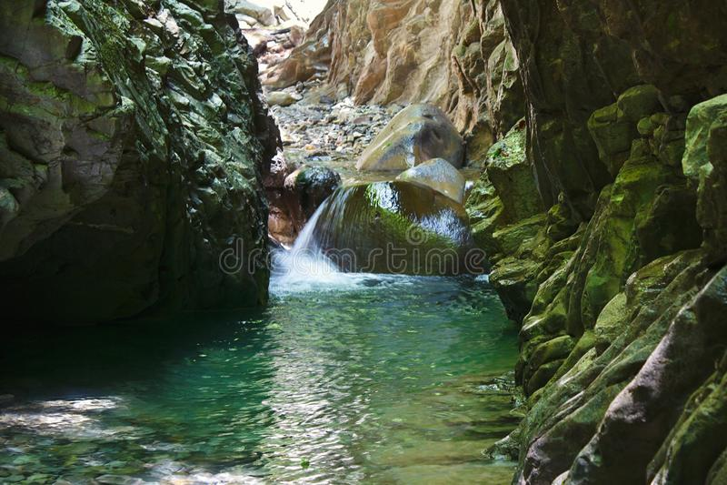 Charming canyon with a flowing streams of mountain river royalty free stock image