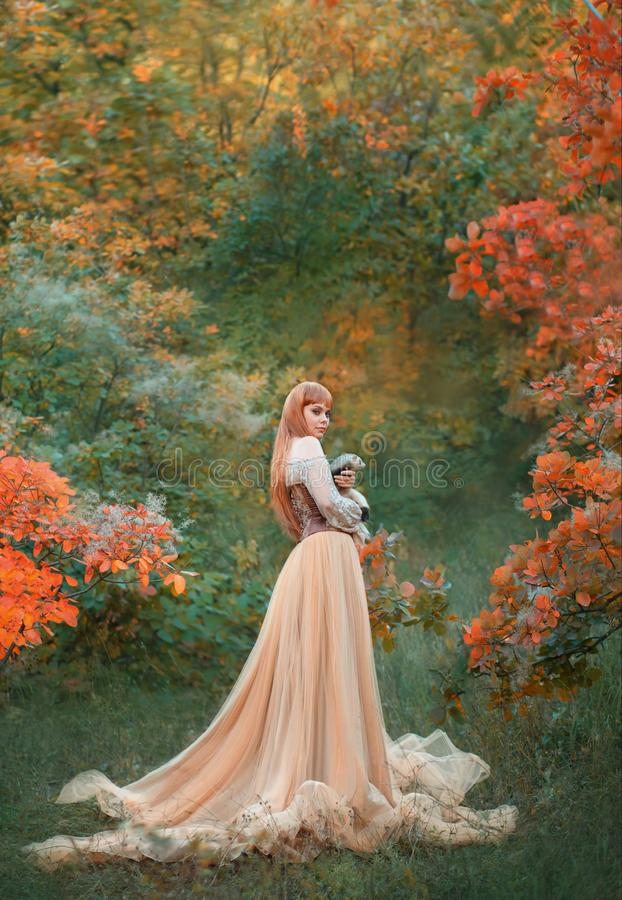 Charming gorgeous girl with fiery red hair stands alone in autumn forest in long light chic dress dress, holding cute stock photo