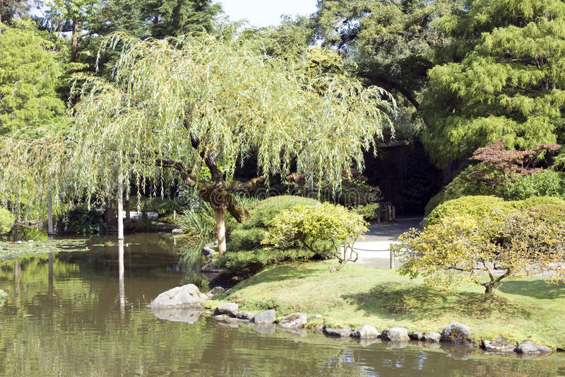 Download Charming Japanese garden stock photo. Image of relaxation - 26783126