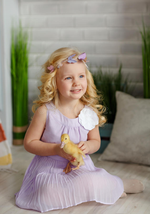 Charming little girl blonde in a dress holding ducklings, in a l stock photography