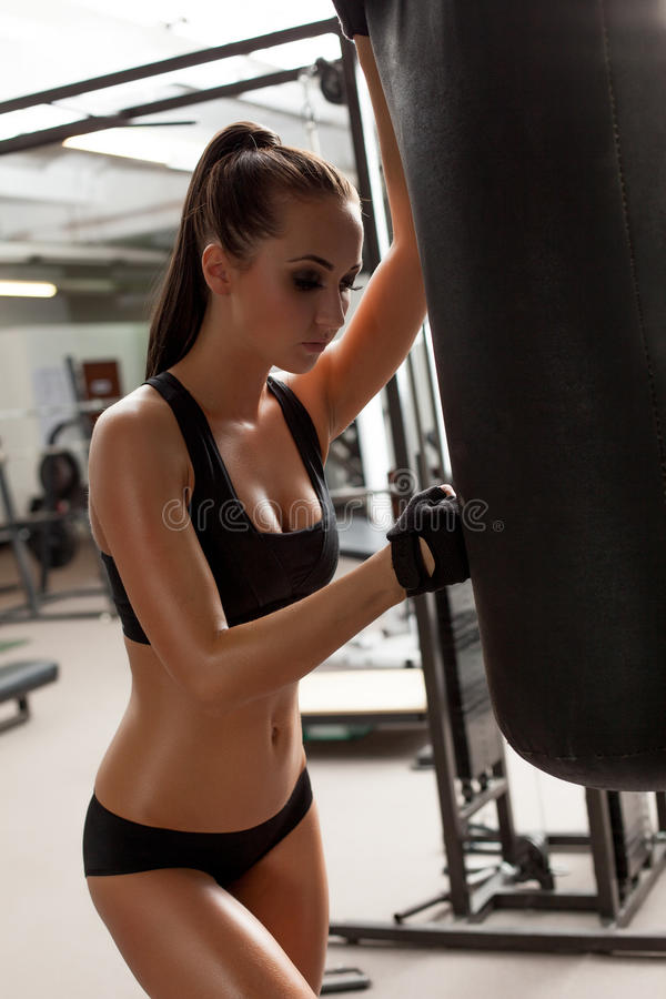 Charming long-haired boxer posing in gym stock photography