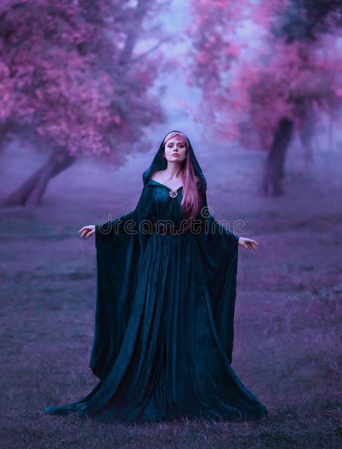 Charming maiden in a blue brakhatny cloak in a wide belt, with pink hair in the forest as a sacrifice for the devil. the stock photography