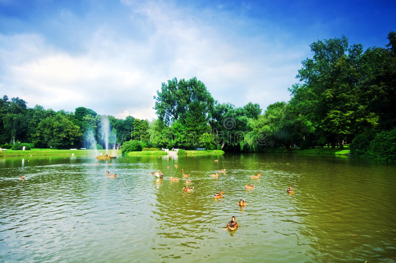 Download Charming Park With Pond Stock Image - Image: 15643391