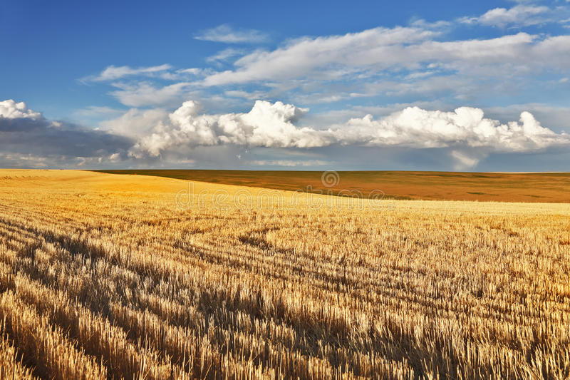 Charming pastoral landscape. In fields of Montana. After a thunder-storm royalty free stock photos