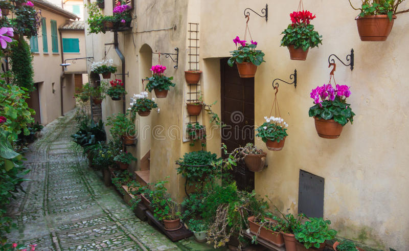 Charming streets of medieval towns, Spello ,Italy. royalty free stock image