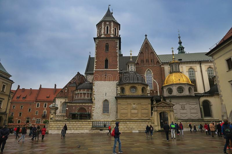 Charming Wawel in Krakow in rose blossom stock photos