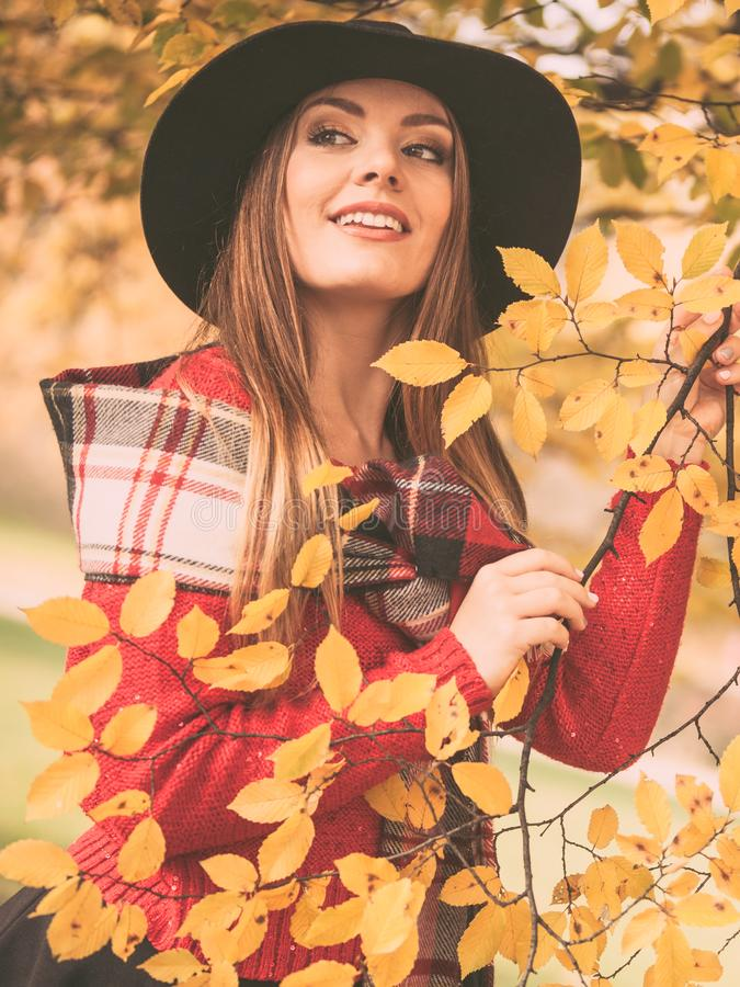 Charming woman walking in autumnal park royalty free stock photo