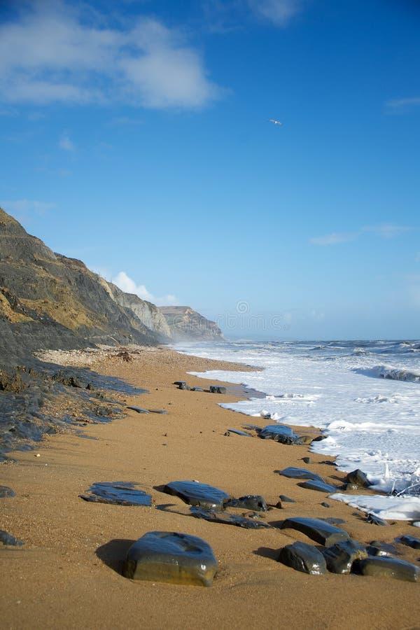 Charmouth海滩和金黄盖帽多西特英国 库存图片