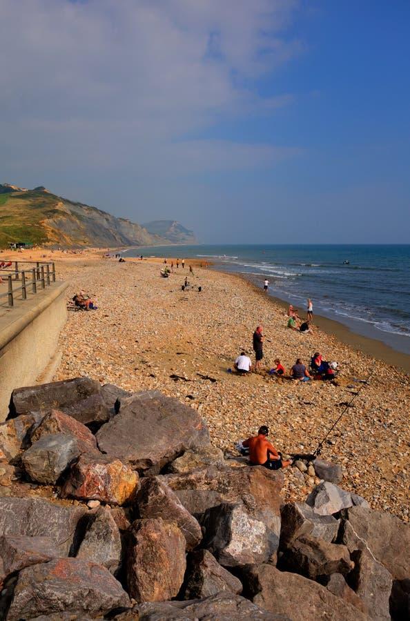 Charmouth的游人使多西特有小卵石和木瓦的英国英国靠岸 库存图片