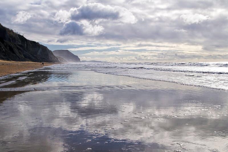 Charmouth strand - Devon arkivfoto