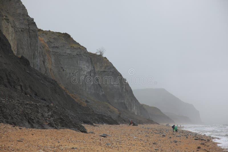 Charmouth strand i Dorset royaltyfri foto