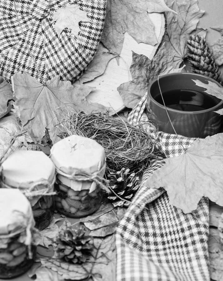 ?charpe de chapeau et bonbons naturels ? miel dans des pots pr?s de tasse de feuilles tomb?es couvertes par fond de th? Festins f image libre de droits