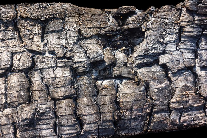 Charred Burned Tree Wood. Black charred wood. The burned tree texture is useful for background. Burnt log pattern. Abstract for Fire, ruined, danger, risk and royalty free stock photography