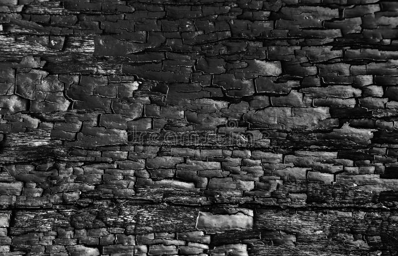 Charred dark wood texture for background royalty free stock photo