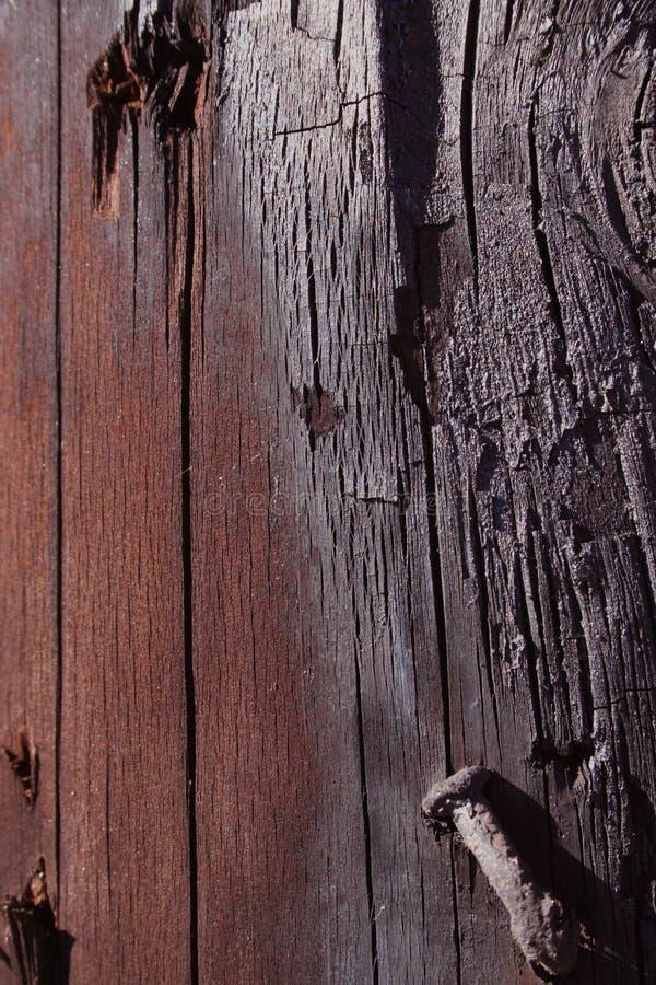 Charred Nail stock image