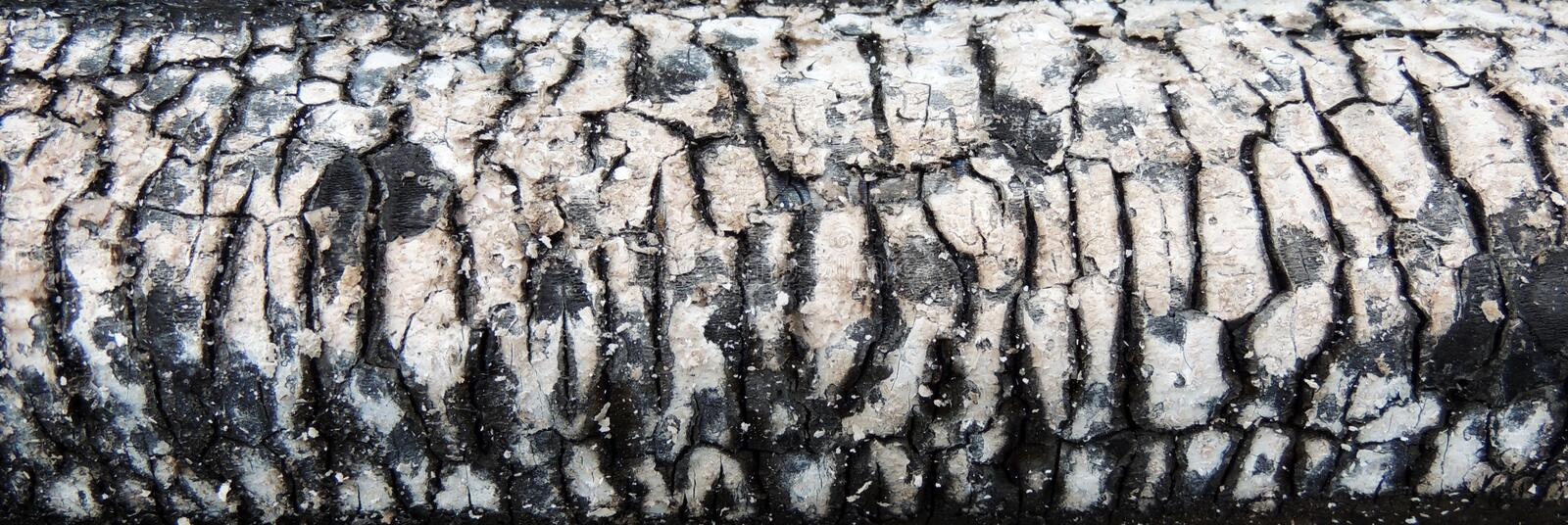 Download Charred piece of wood stock photo. Image of burnt, burn - 31475974