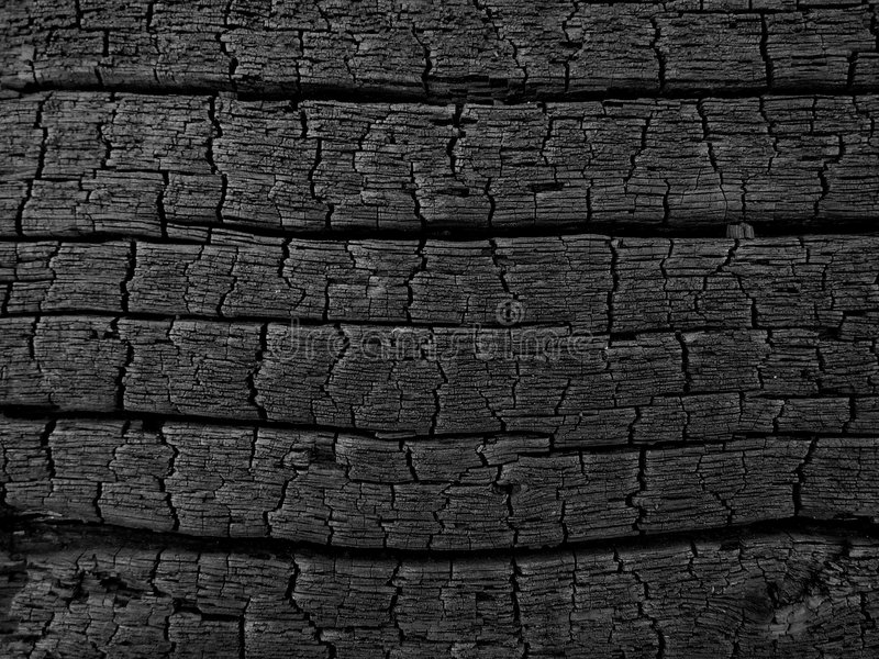 Charred Wood 2. Charred log background texture royalty free stock photo