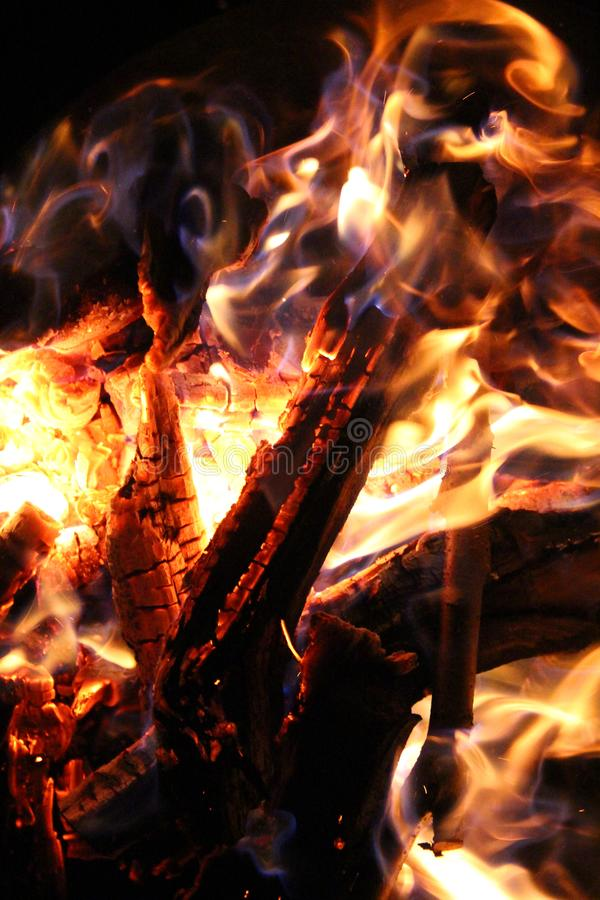 Charred and fire three. Charred wood and bright flames on dark background royalty free stock photo
