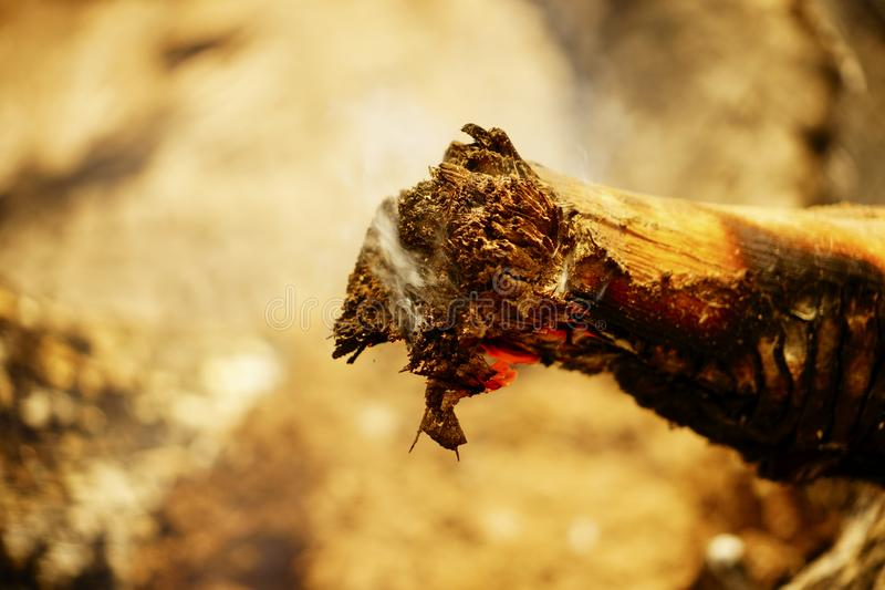 Charred wood. A stick of wood burnt with some charred parts crossing diagonally across the frame stock photos