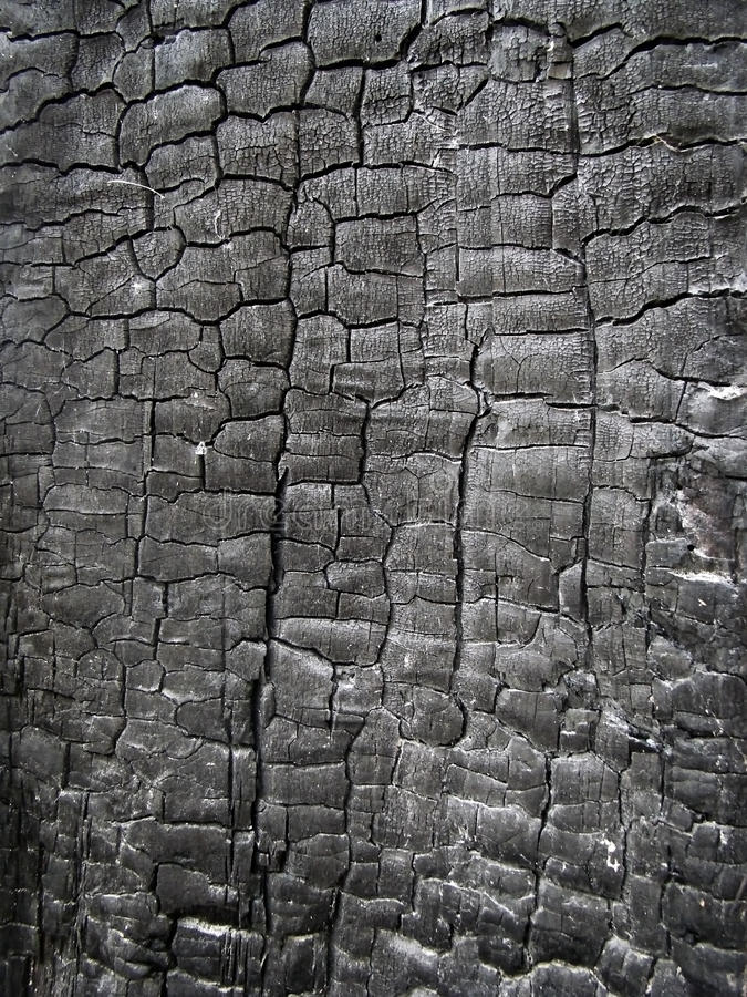 Charred wood texture. Texture of a wide surface of charred wood stock photos