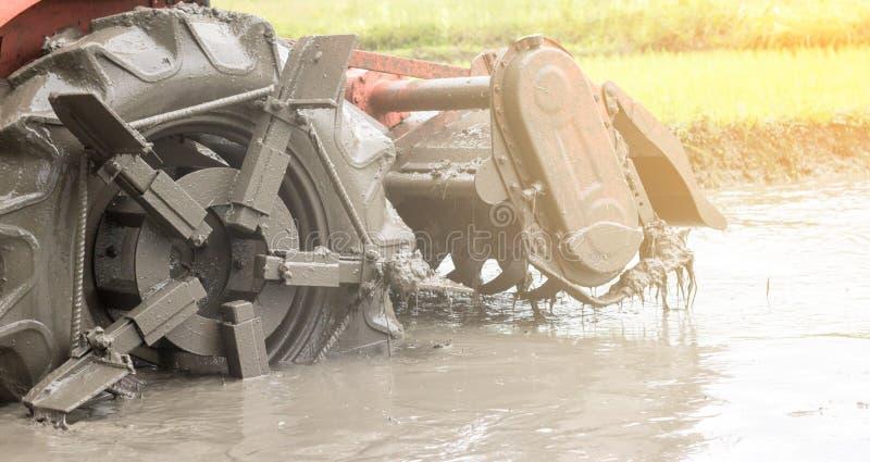 Charrue de tracteur en riz photo stock