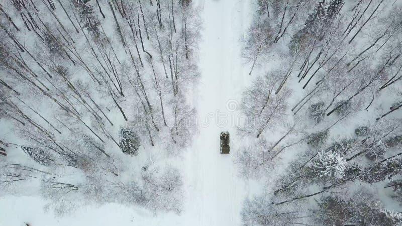Chars d'assaut militaires dans les bois pendant des exercices militaires clip Vue supérieure du personnel blindé militaire photographie stock
