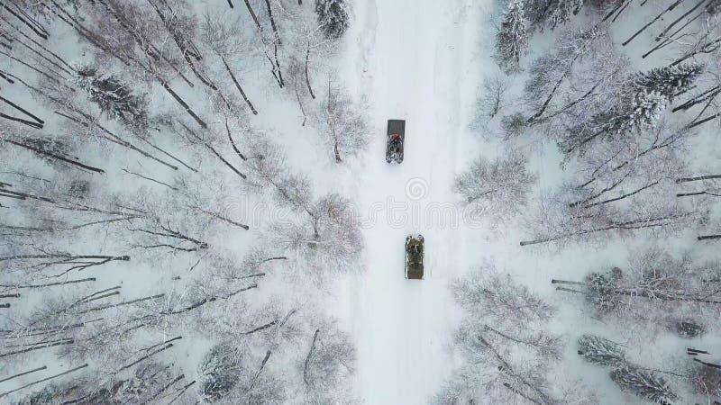 Chars d'assaut militaires dans les bois pendant des exercices militaires clip Vue supérieure du personnel blindé militaire photo libre de droits
