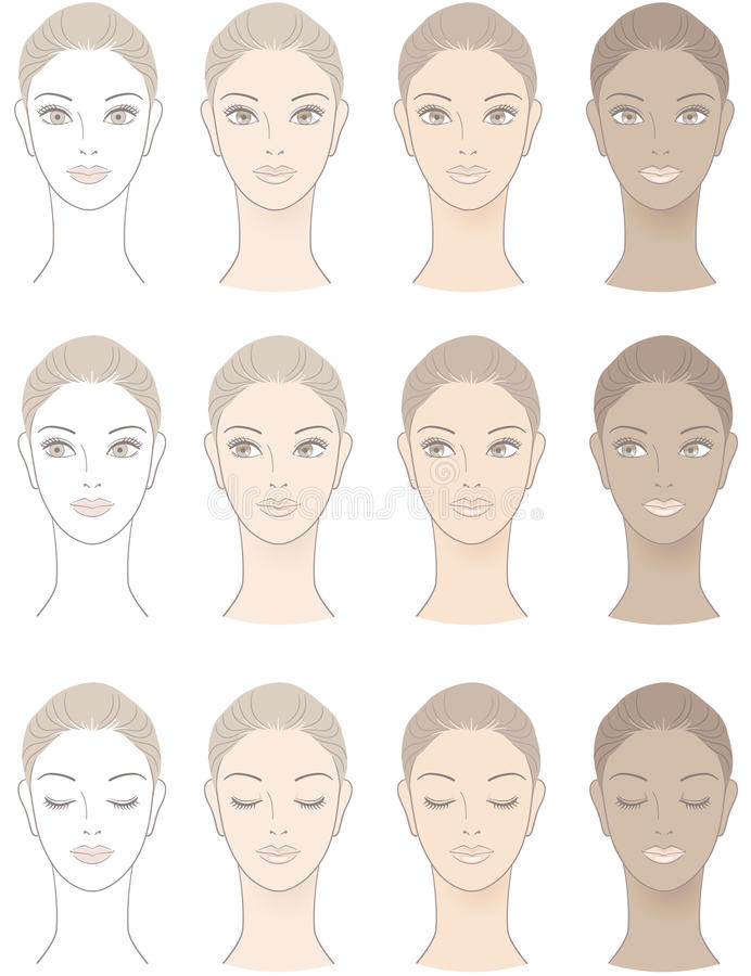 Chart of Beautiful Woman complexion royalty free illustration
