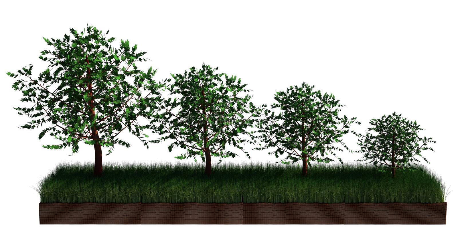 Chart concept. 3d image of 4 trees different in size. concept for agriculture falling or rising chart. illustration is isolated on white background vector illustration