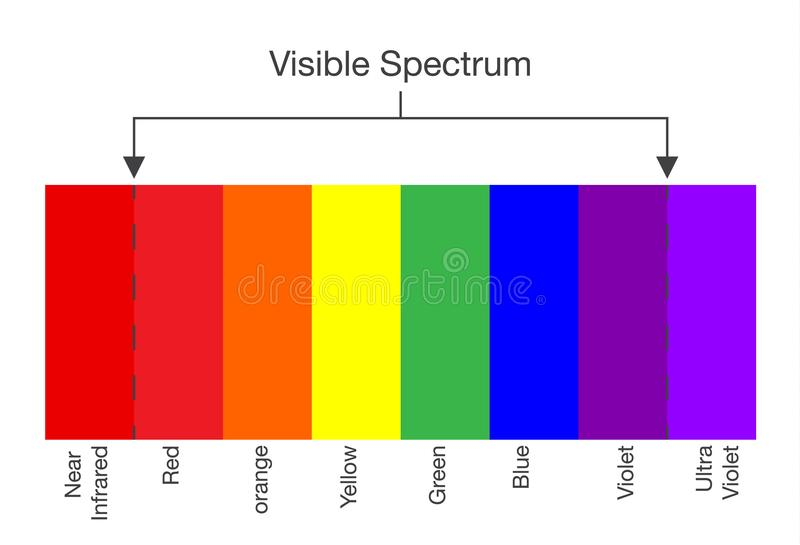 Chart of Visible spectrum color. Illustration about Human vision and light stock illustration