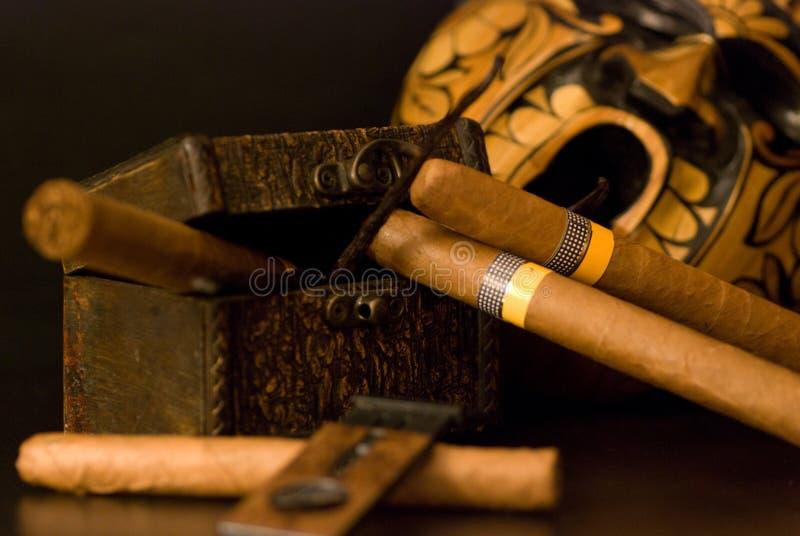 Charuto cubano imagens de stock royalty free
