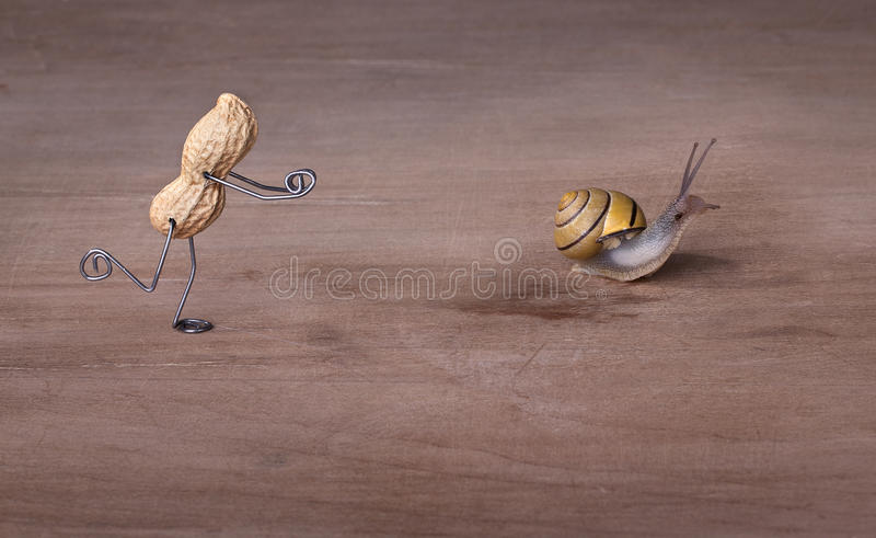 Chasing Snails royalty free stock image