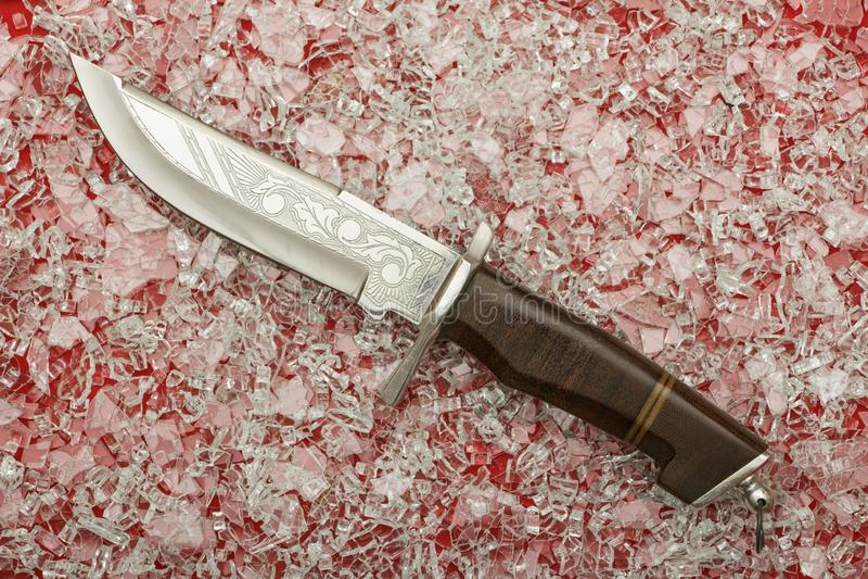 Chassant le couteau de poignard avec la coquille d?corative d'isolement sur un fond blanc Poignard de cru sur le fond blanc Maque photos libres de droits