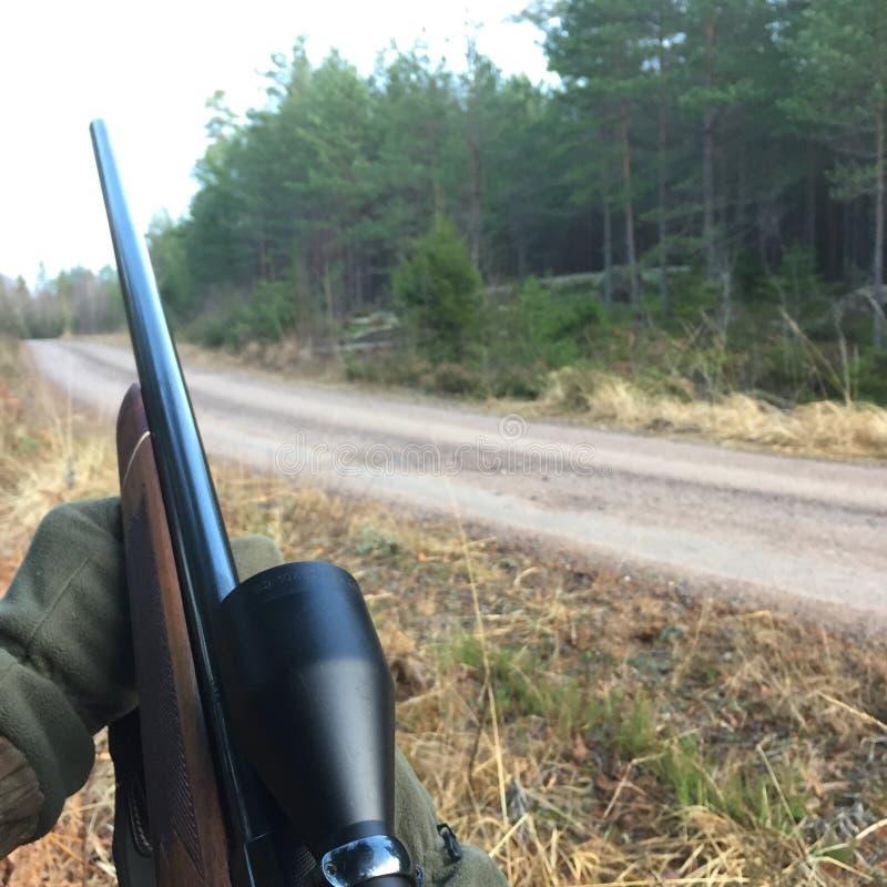 chasse photographie stock libre de droits