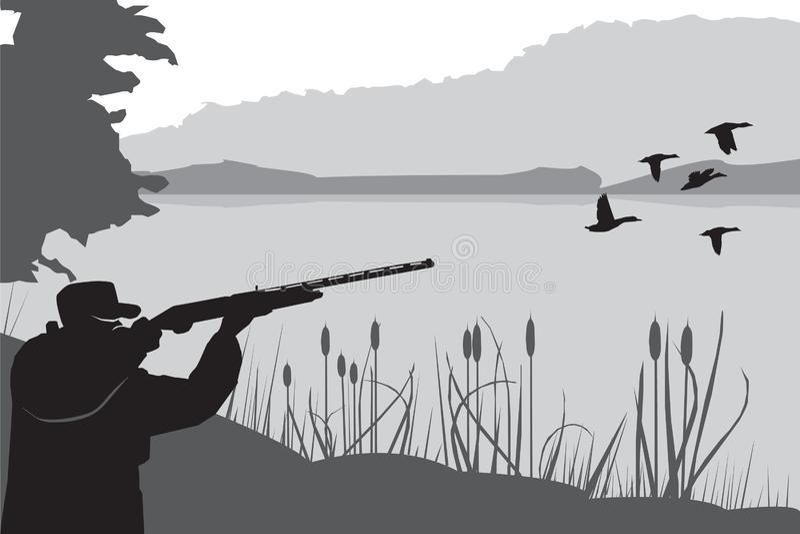 Chasse aux oiseaux de gibier Chasseur tourné vers le ciel Saison des chasseurs Un homme tenant un fusil Tiré sur les canards Vect illustration de vecteur