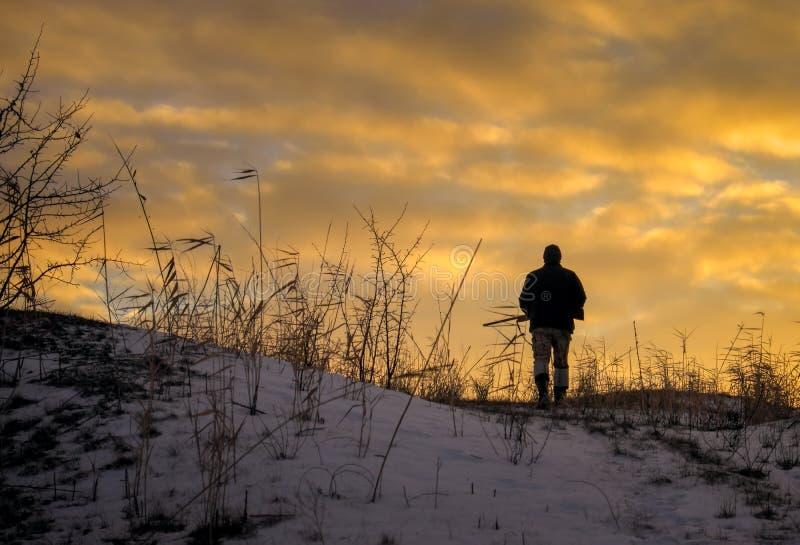 Chasse d'hiver au lever de soleil Chasseur se déplaçant avec le fusil de chasse photos stock