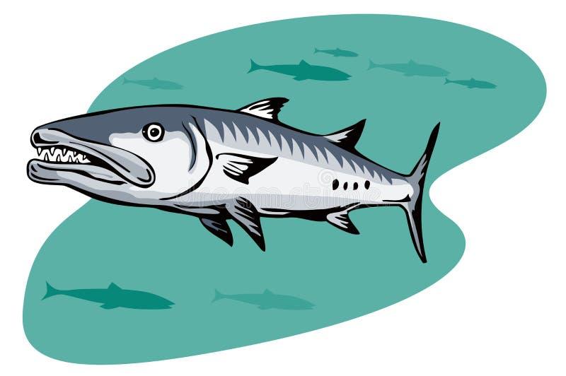 Chasse de barracuda pour une proie illustration libre de droits