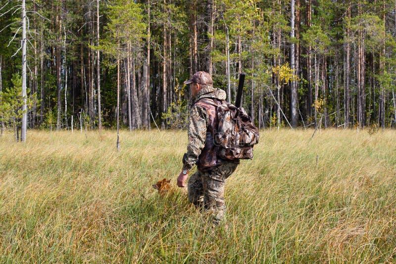 Chasseur avec le chien sur le marais sur la chasse d'automne photo stock