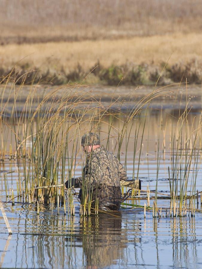 Chasseur de canard image stock