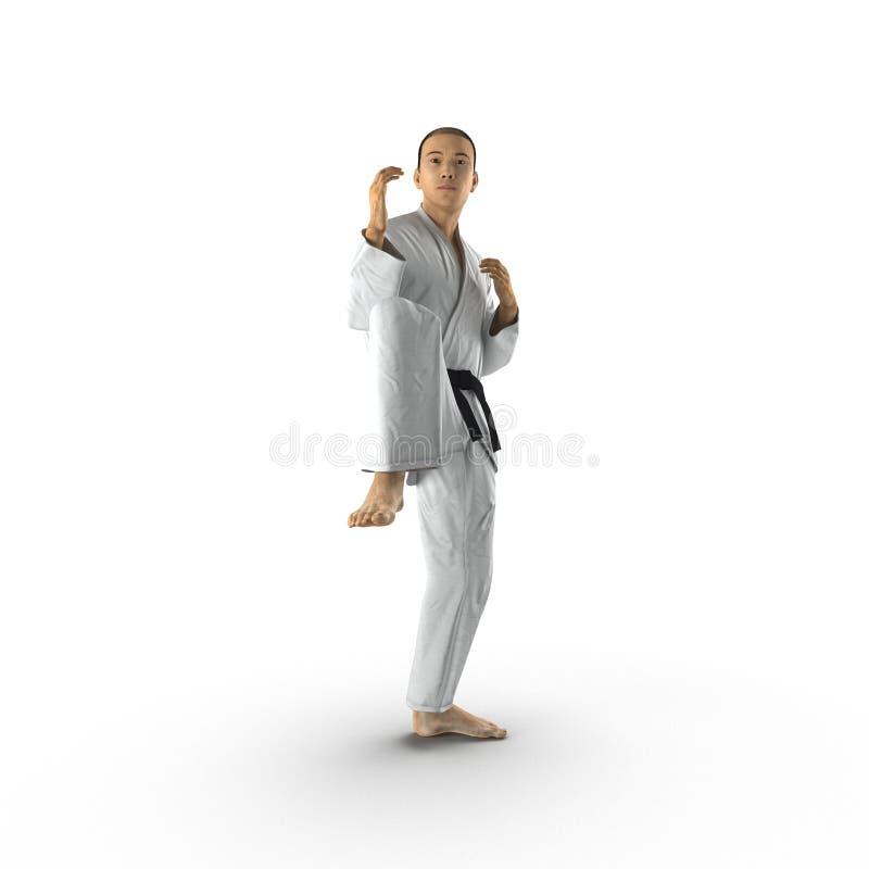 Chasseur de karaté d'isolement sur le blanc illustration 3D illustration de vecteur
