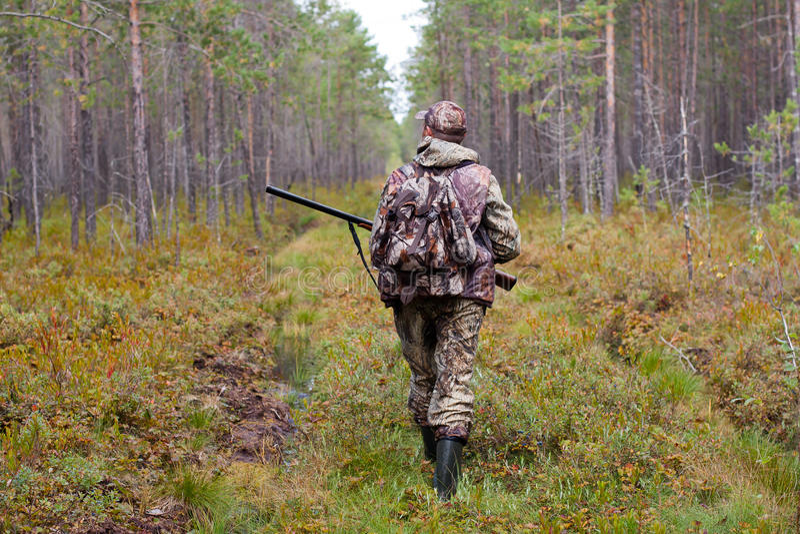 Chasseur marchant sur le chemin forestier photo libre de droits