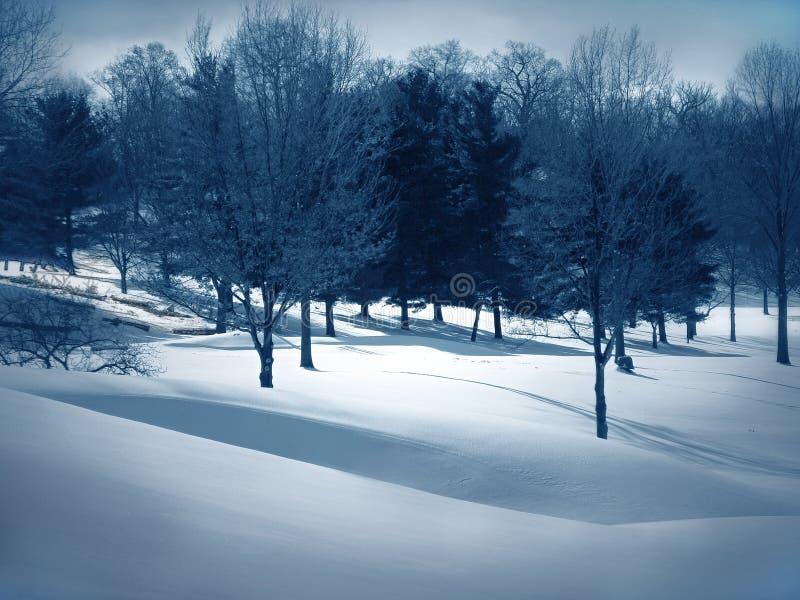Chassoirs de neige image stock