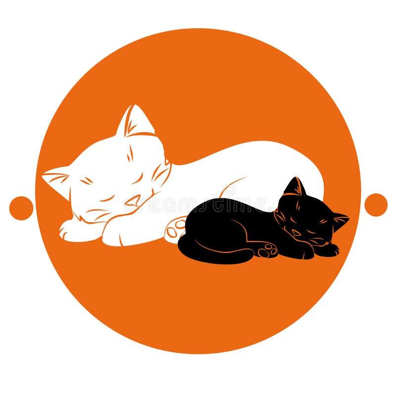 Chat à côté du chaton photo libre de droits