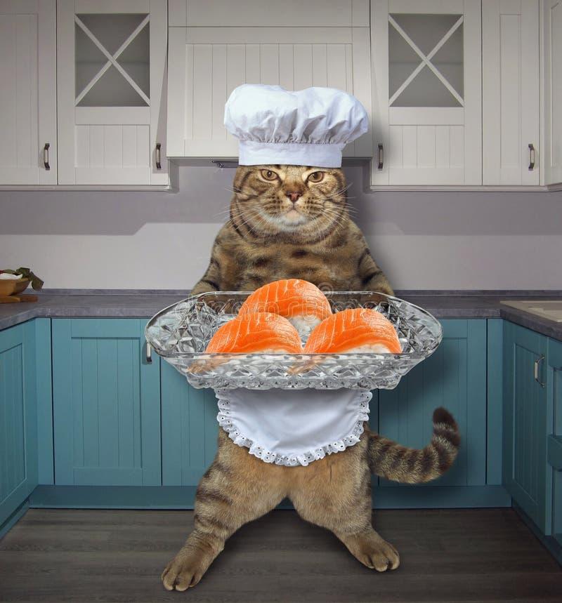 Chat avec des sushi réglés dans la cuisine 2 image libre de droits